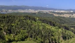 San Giovanni in Fiore - Camigliatello: natura e fede nel cuore della Sila