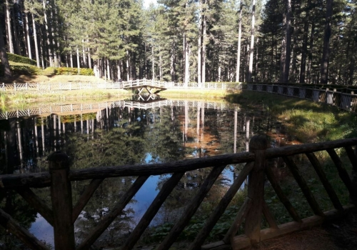 Sila Piccola: Villaggio Mancuso - centro visite e trekking nella Riserva Biogenetica Poverella